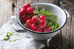 Radishes in white colander. Fresh wet radishes in white colander over old wooden table Royalty Free Stock Image