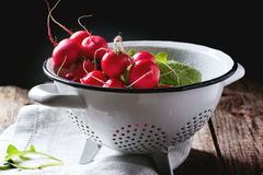 Radishes in white colander. Fresh wet radishes in white colander over old wooden table Royalty Free Stock Photos