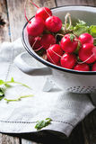 Radishes in white colander. Fresh wet radishes in white colander over old wooden table Stock Photo