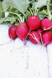 Radishes on a white plank Royalty Free Stock Images