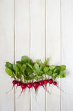 Radishes on the white wooden table. In line Stock Image