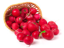 Radishes in a wicker basket isolated on white background.  Stock Photo