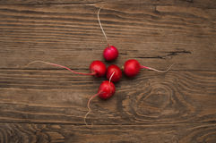 Radishes on a wooden background. The fresh radishes on a wooden background Stock Photography