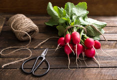 Radishes on wooden background selective focus. Fresh radishes on wooden background selective focus Stock Photo