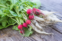 Radishes on wooden board. Radishes and radish on wooden board Stock Photos