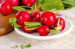 Radishes on   wooden board. Royalty Free Stock Images