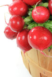Radishes in Wooden Bushel Basket. Royalty Free Stock Image
