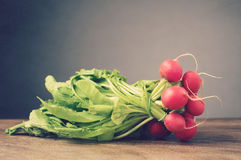 Radishes on wooden table. A bunch of fresh radishes on brown wooden table Royalty Free Stock Photos