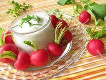 Radishes with yoghurt and chives Stock Image