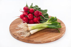 Radishes and young onions on a kitchen wooden board Stock Images