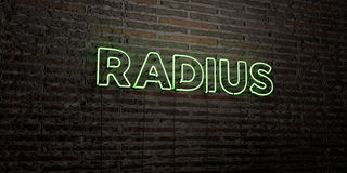 RADIUS -Realistic Neon Sign on Brick Wall background - 3D rendered royalty free stock image Royalty Free Stock Image