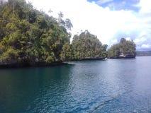 radja ampat Papoea stock afbeeldingen