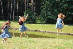 radości łąka Obraz Royalty Free