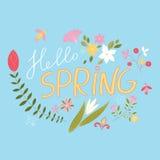 Radosny, wiosna kwiecisty skład Obrazy Royalty Free