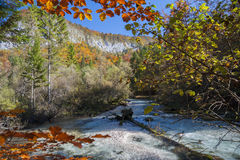 Radovna River in Fall Royalty Free Stock Photography