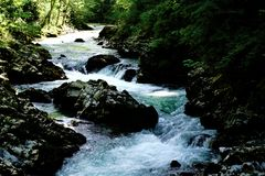 Radovna river rapids in the Vintgar Gorge Royalty Free Stock Images