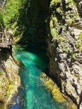 Radovna river in Vintgar Gorge Royalty Free Stock Photography