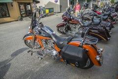 Raduno nazionale Halden, Norvegia 12 del MAIALE al 15 giugno 2014 (bici) Fotografia Stock
