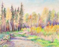 Radura in foresta illustrazione di stock