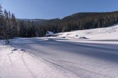 Radura Tatry della montagna Fotografia Stock