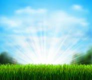 Radura verde fresca con erba Condisca il fondo con cielo blu, il sole e le nuvole lanuginose bianche Fotografia Stock