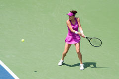 Radwanska 231 Photos stock