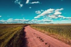 Radweg auf einem Gebiet an einem sonnigen Tag beim Weinlesetonen lizenzfreies stockfoto