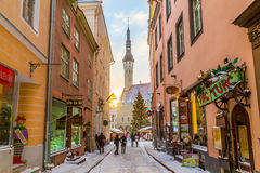 Raekoja plats, Old Town Hall Square and Town Hall in Tallinn in Stock Photography