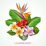 Raelistic exotic flowers composition illustration royalty free illustration