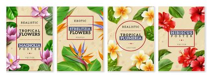 Raelistic exotic flowers vertical posters set vector illustration