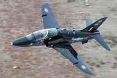 RAF-FALKE Lizenzfreies Stockfoto