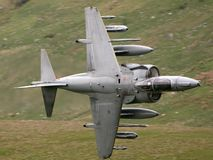 RAF Harrier. An RAF Harrier on a training mission in North Wales stock photo