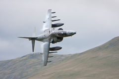 RAF Harrier Stock Afbeelding