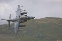 RAF Harrier Stock Photos