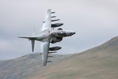 RAF Harrier Stock Image