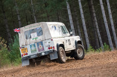 Free RAF Military Rally Team Stock Images - 27548644