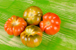 Raf tomatoes Stock Images