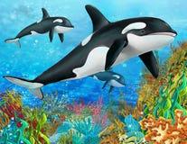 Rafa koralowa - ilustracja dla dzieci Fotografia Stock