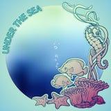 Rafa koralowa kolażu ramy karty szablon Obrazy Royalty Free