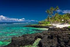 Rafa koralowa na Upolu, Samoa wyspy zdjęcie stock