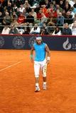 Rafael Nadal, Amburgo 2008 Immagine Stock Libera da Diritti