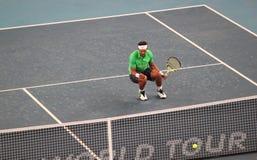 Rafael Nadal (BESONDERS) feiert Sieg Lizenzfreies Stockfoto