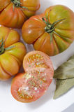 Raff Tomato Imagenes de archivo