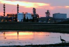 Raffinaderi och natur Fotografering för Bildbyråer