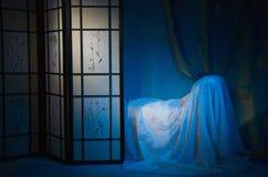 raffinerad boudoirinterior arkivfoto