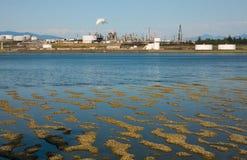 Raffinerie à marée basse photographie stock