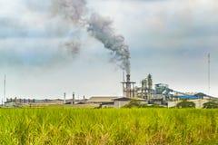 Raffinerie au paysage rural, Guayas, Equateur Images stock