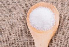 Raffini lo zucchero bianco I fotografia stock libera da diritti