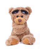 Raffreddi l'orso Immagini Stock Libere da Diritti