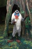 迪斯尼世界动物界Rafiki字符 库存图片